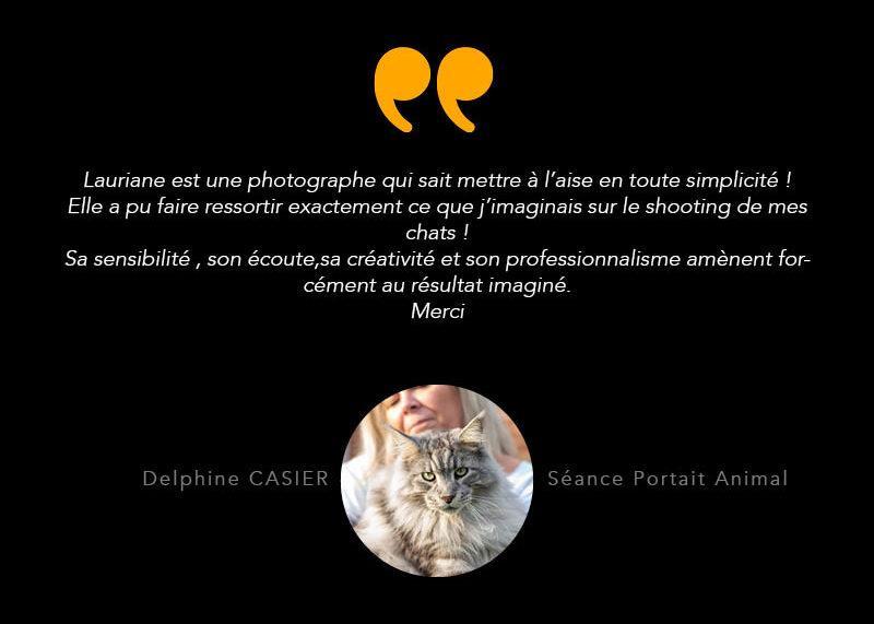 temoignage - photographie animal- chat - zwo photographie